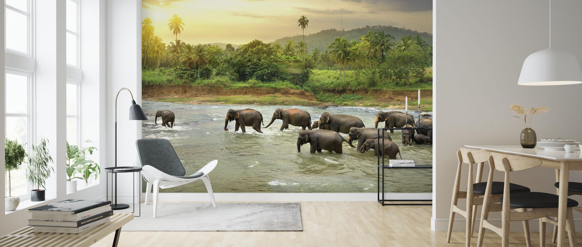 Elephant in River - Wallpaper - Living Room