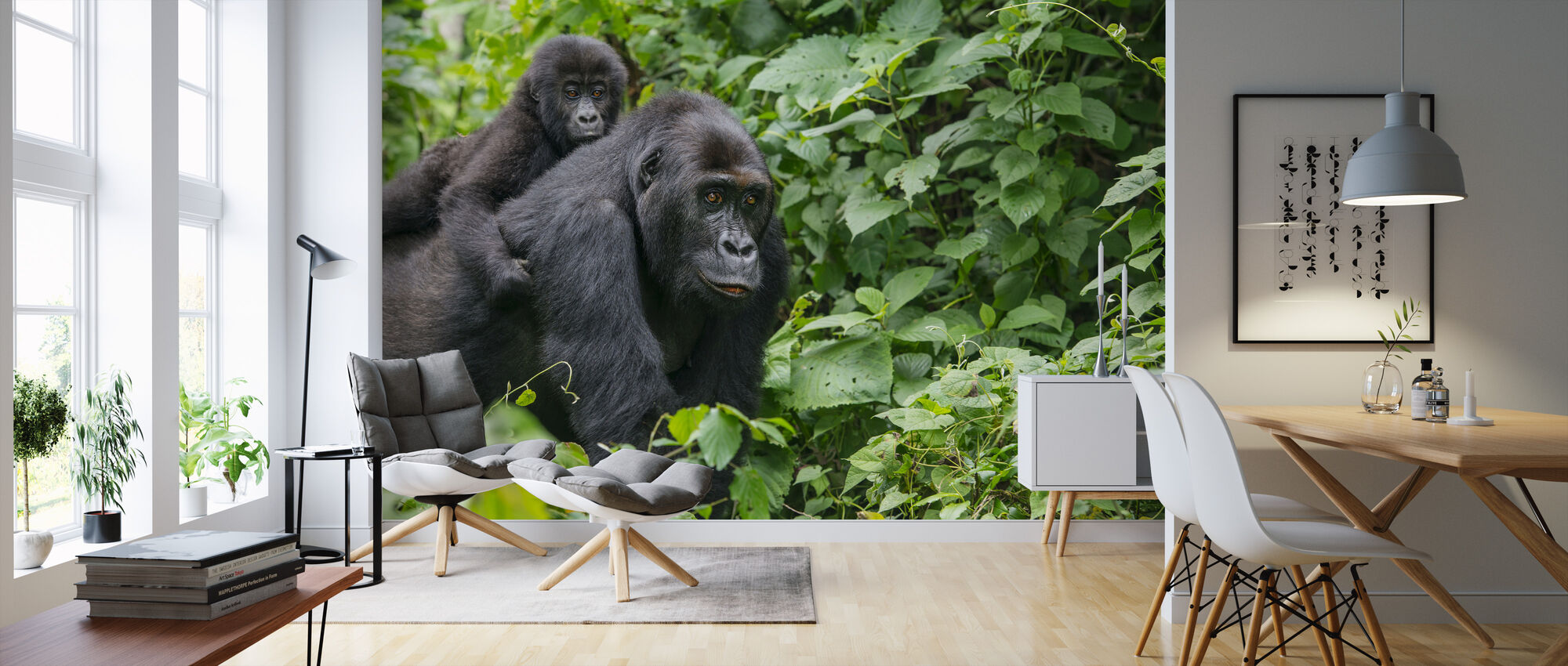 Gorilla Baby and Mother - Wallpaper - Living Room