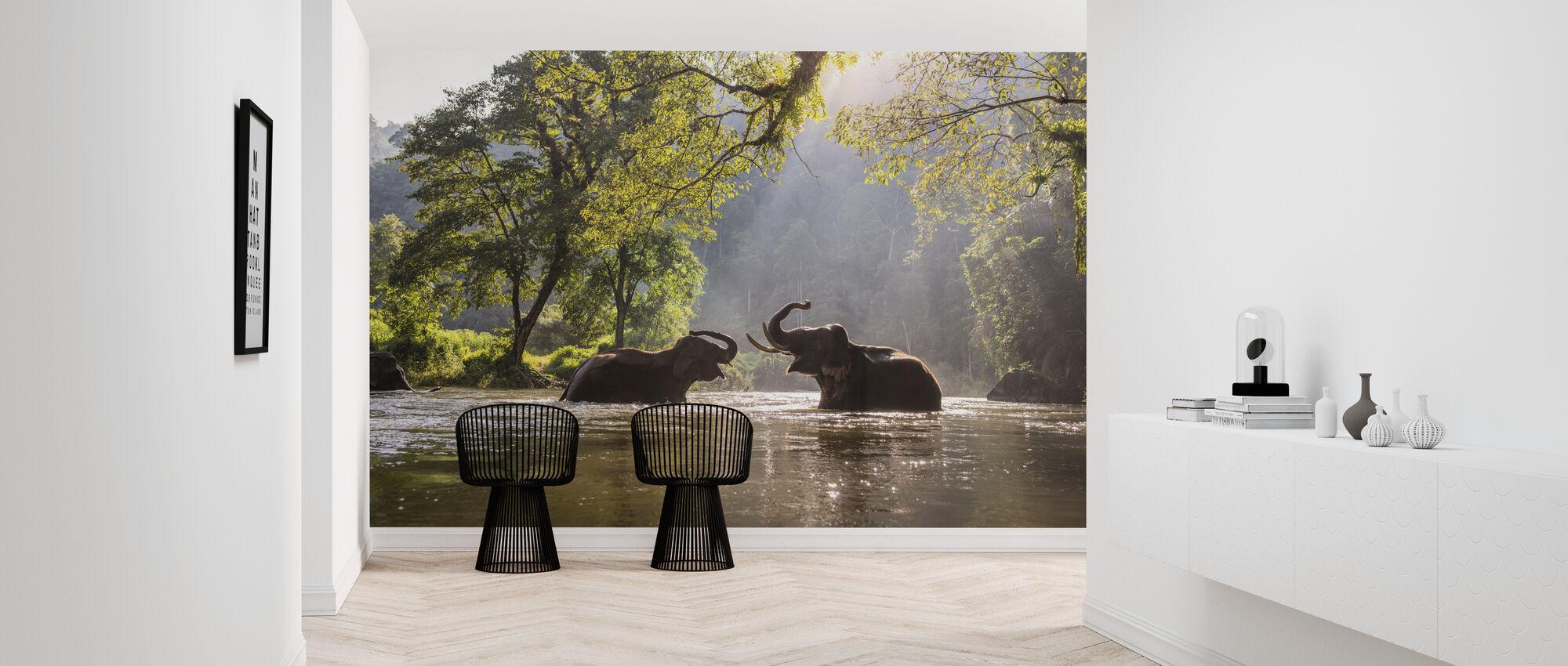Elephant Playing Water - Wallpaper - Hallway