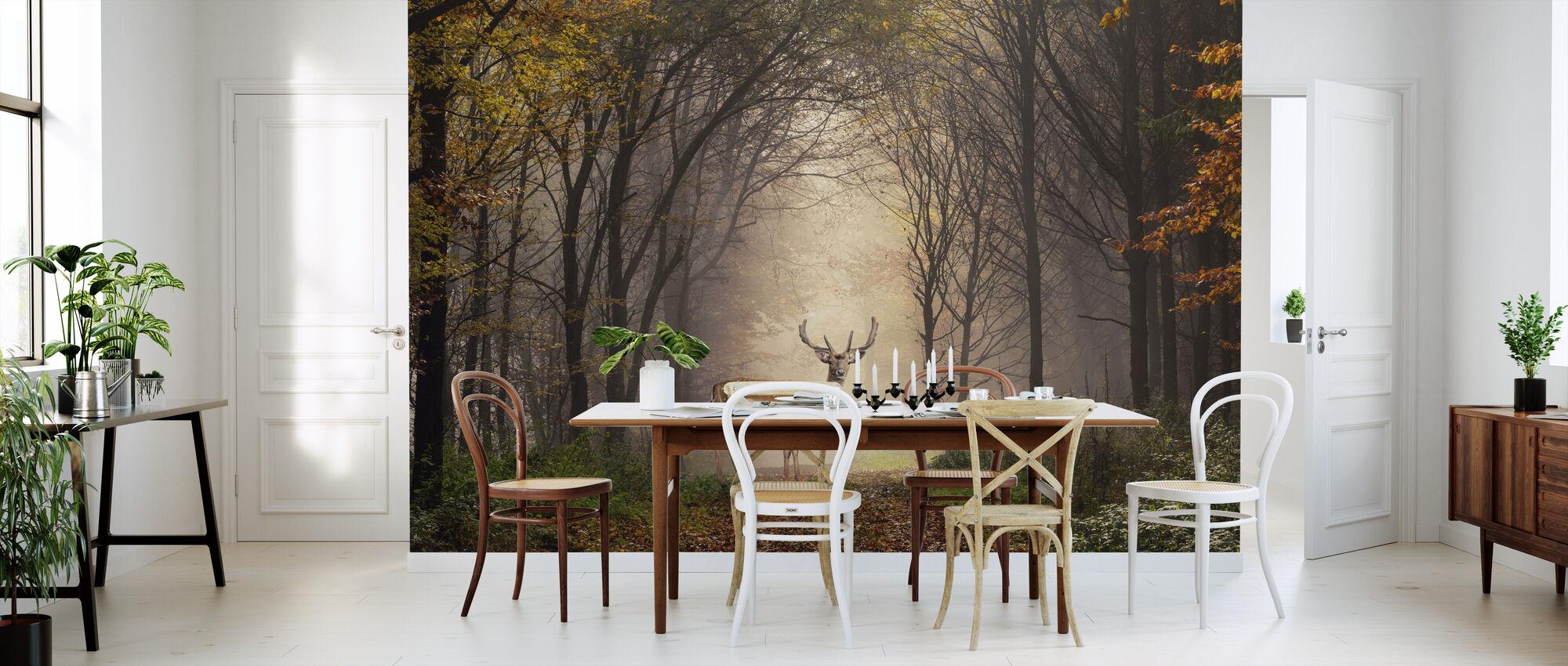 Fallow Deer in a Forest - Wallpaper - Kitchen