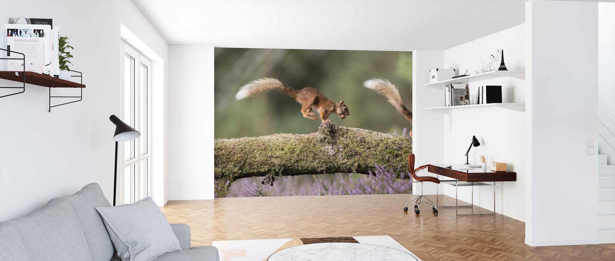 Oravat käynnissä Log - Tapetti - Toimisto