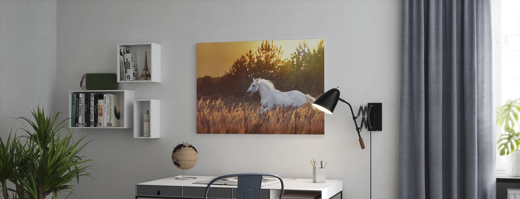 Weißer Pferdelauf - Leinwandbild - Büro