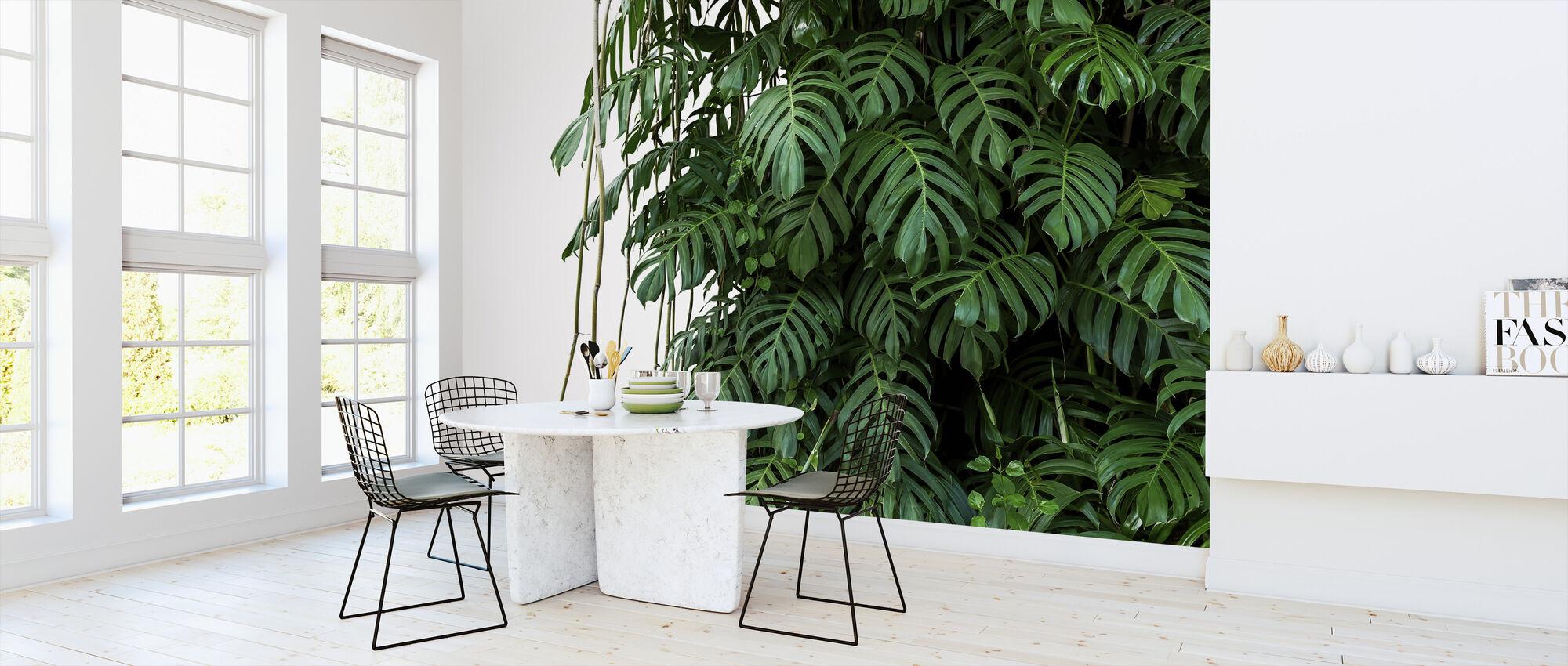 Monstera Tropische Plant - Behang - Keuken