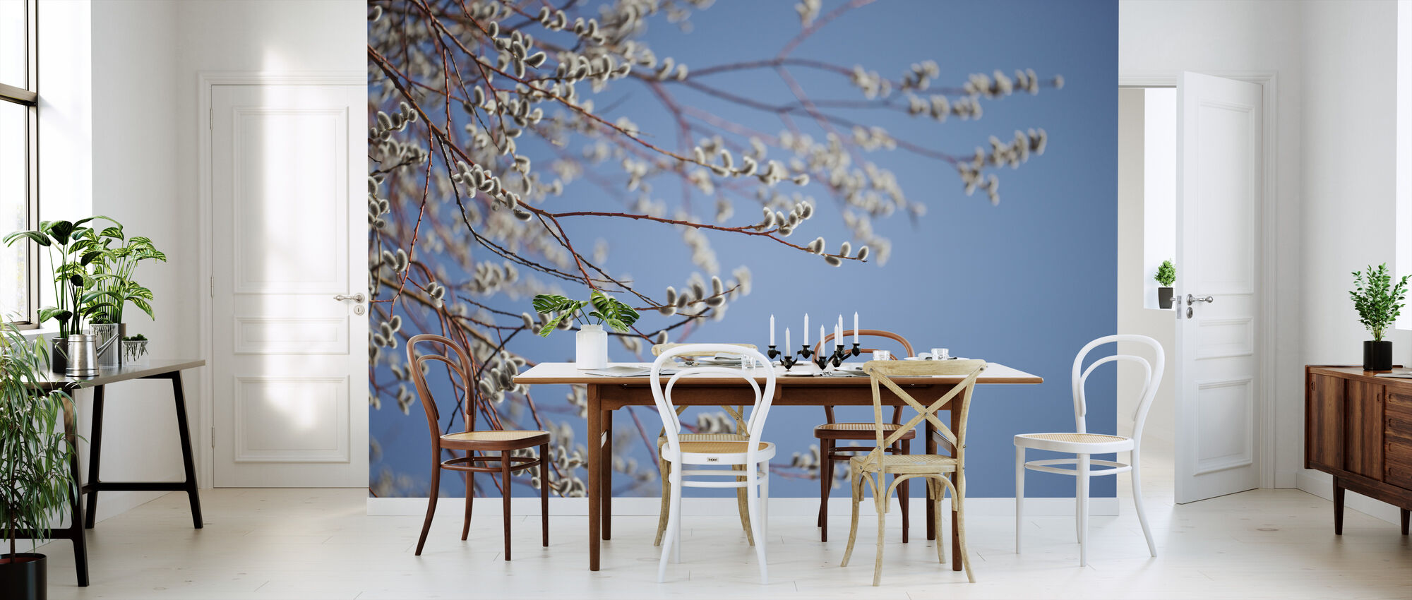 Willow Tree Blossom - Wallpaper - Kitchen