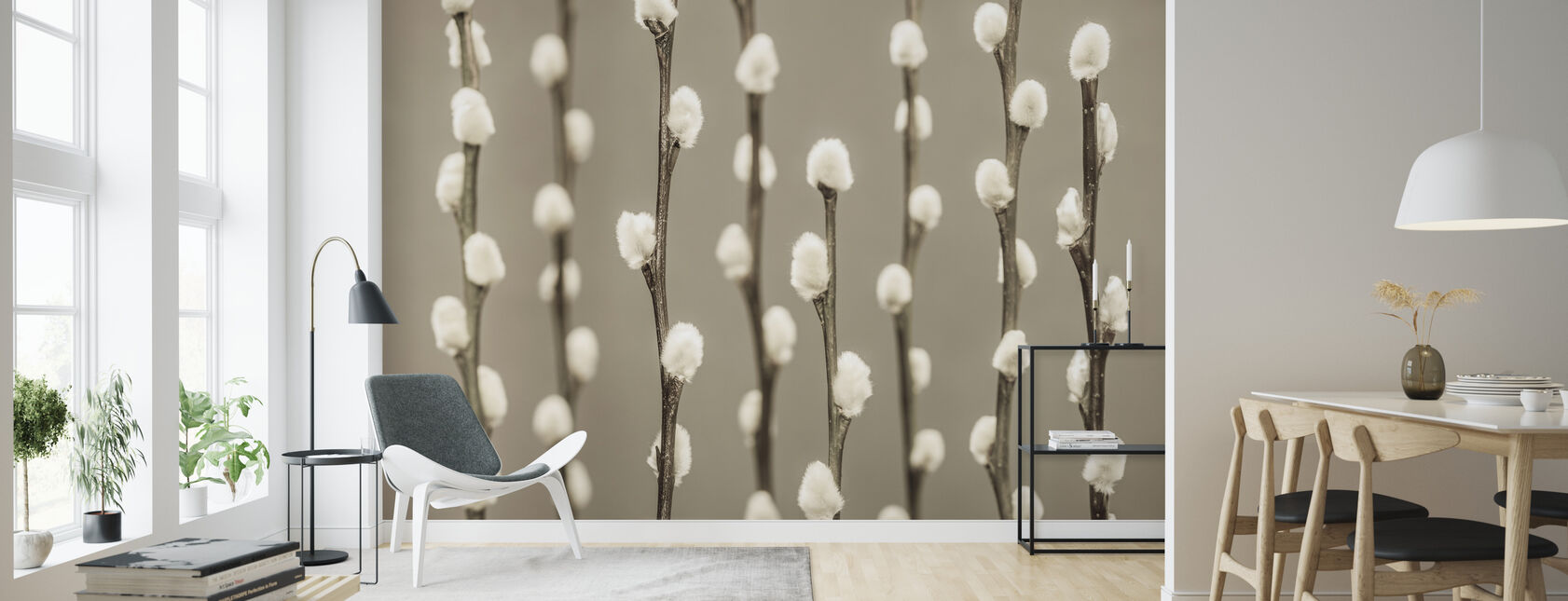 Pussy Willow - Bright - Wallpaper - Living Room