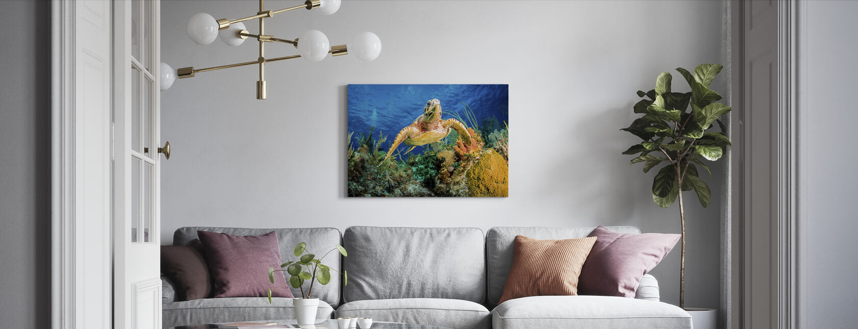 Hawksbill Turtle Svømming - Lerretsbilde - Stue