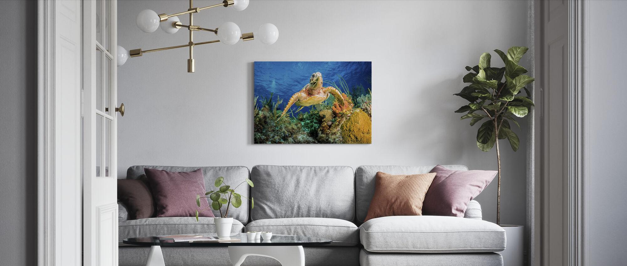 Hawksbill Turtle Swimming - Canvas print - Living Room