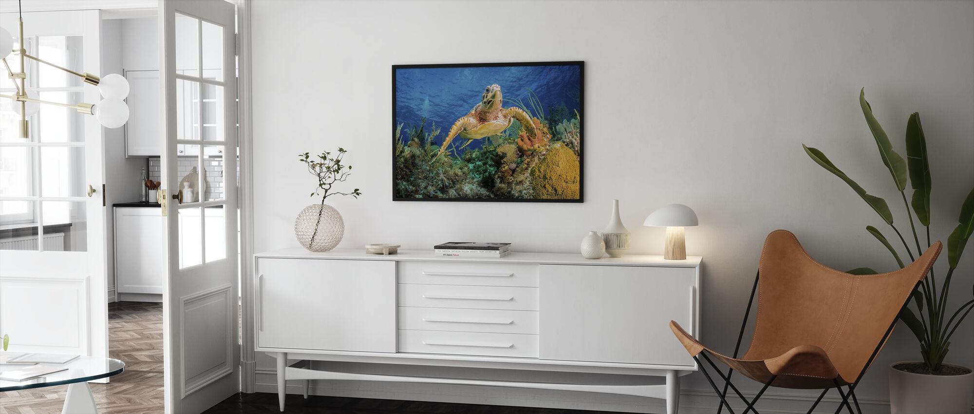 Hawksbill Turtle Swimming - Framed print - Living Room