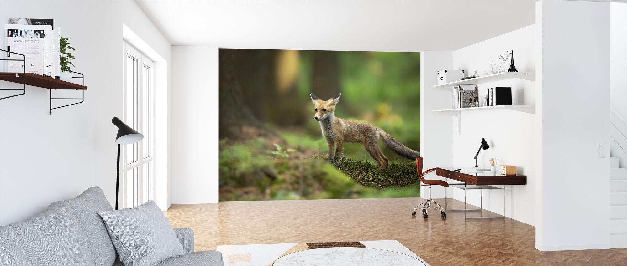 Rødt Fox - Tapet - Kontor