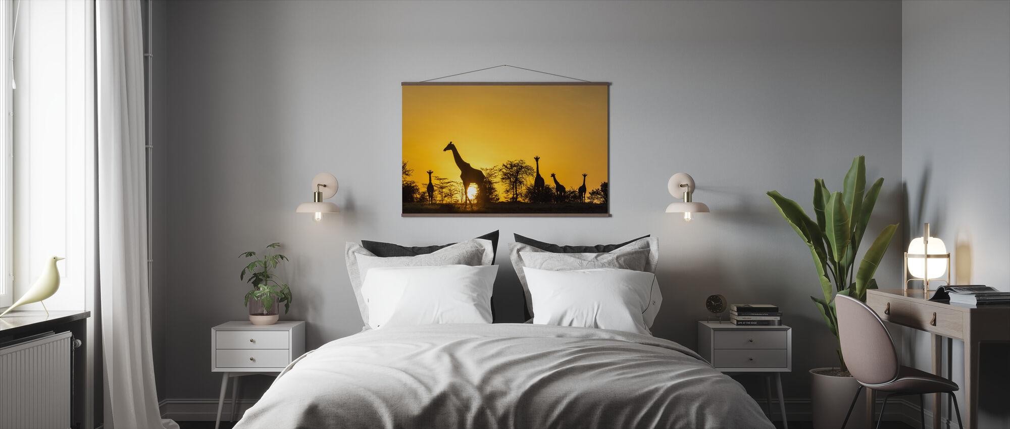 Giraffresa - Poster - Sovrum