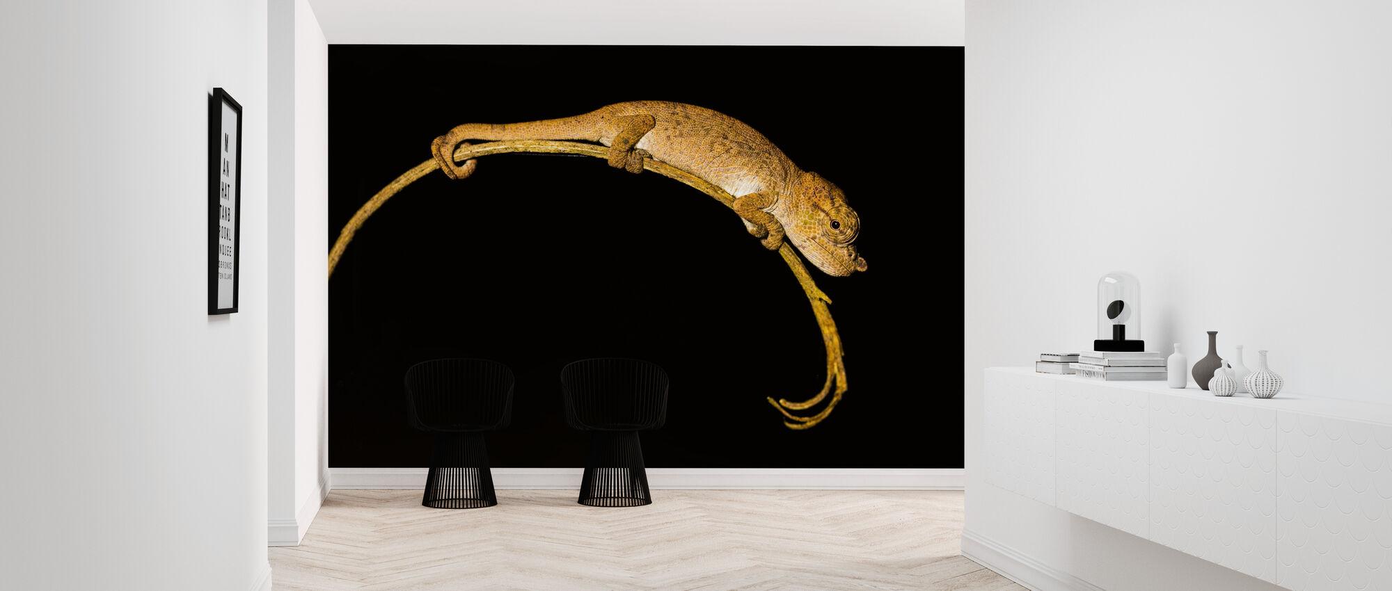 Chameleon - Wallpaper - Hallway