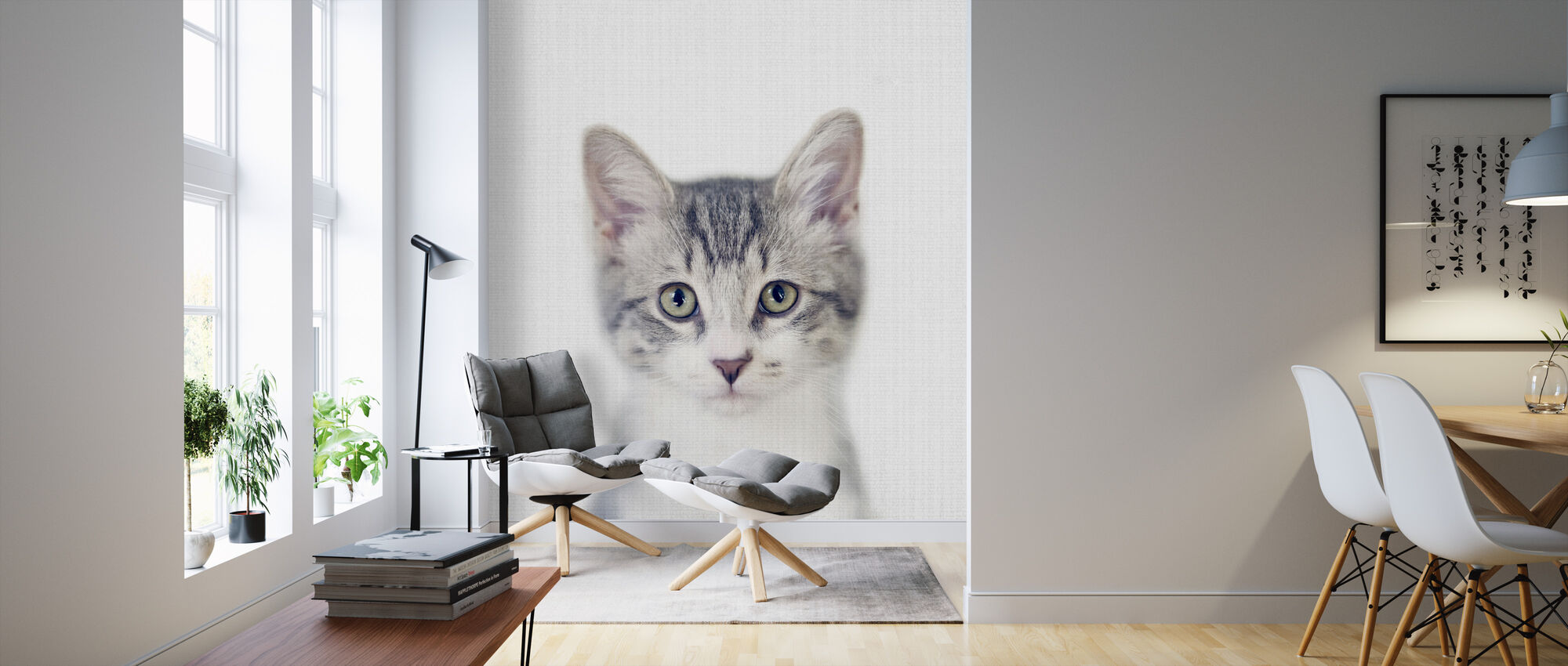 Kitten - Wallpaper - Living Room