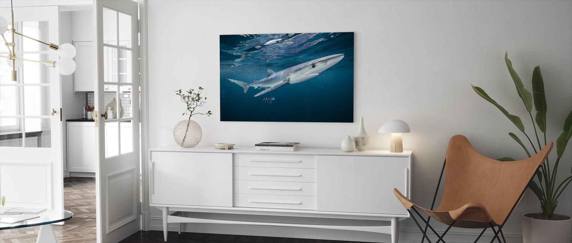 Blå hai med et par pilotfisk - Lerretsbilde - Stue
