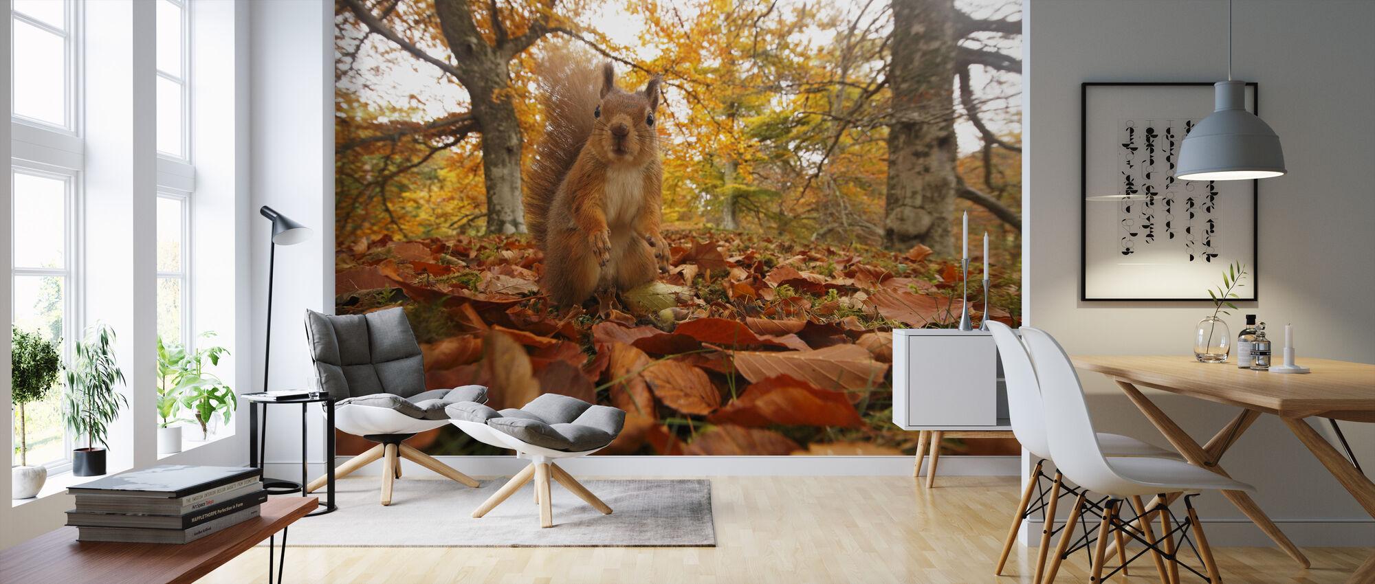Puna-orava Lehtipentueessa - Tapetti - Olohuone