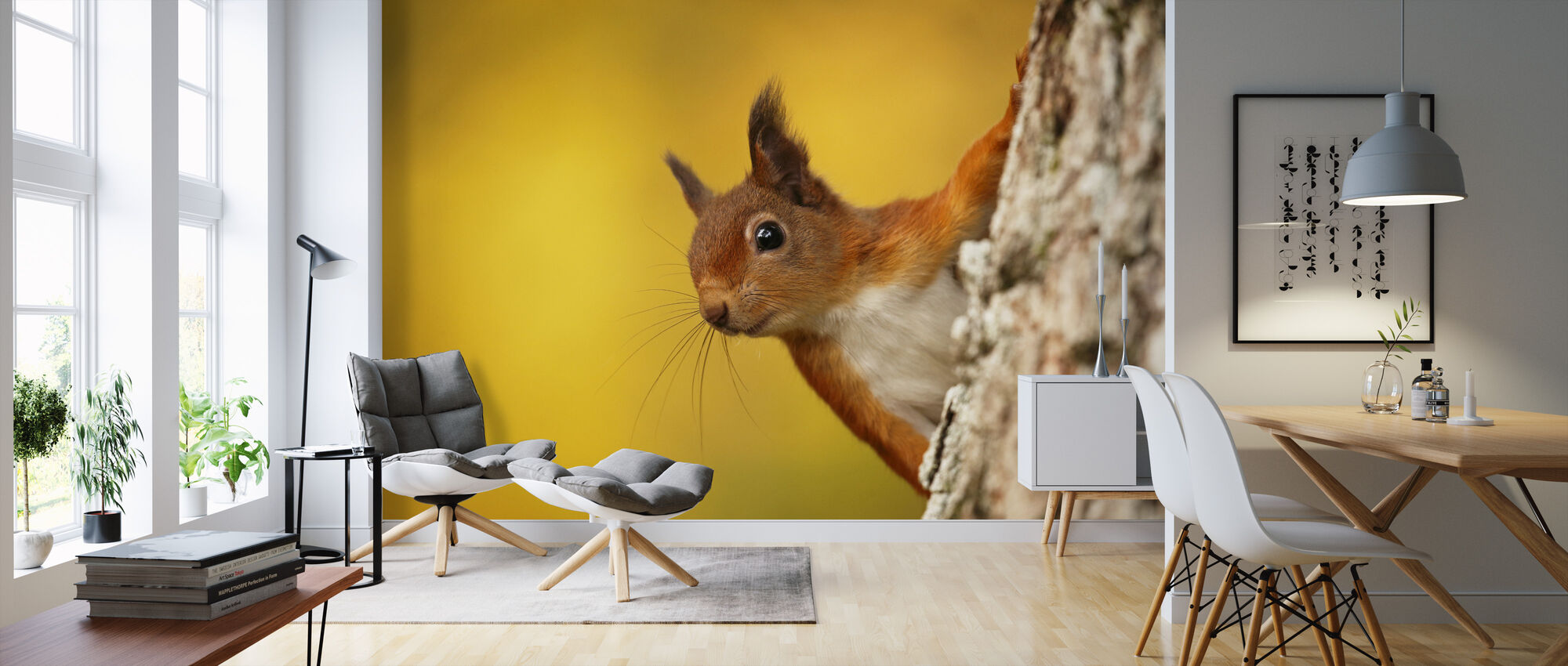 Red Squirrel with Autumn Colors - Wallpaper - Living Room