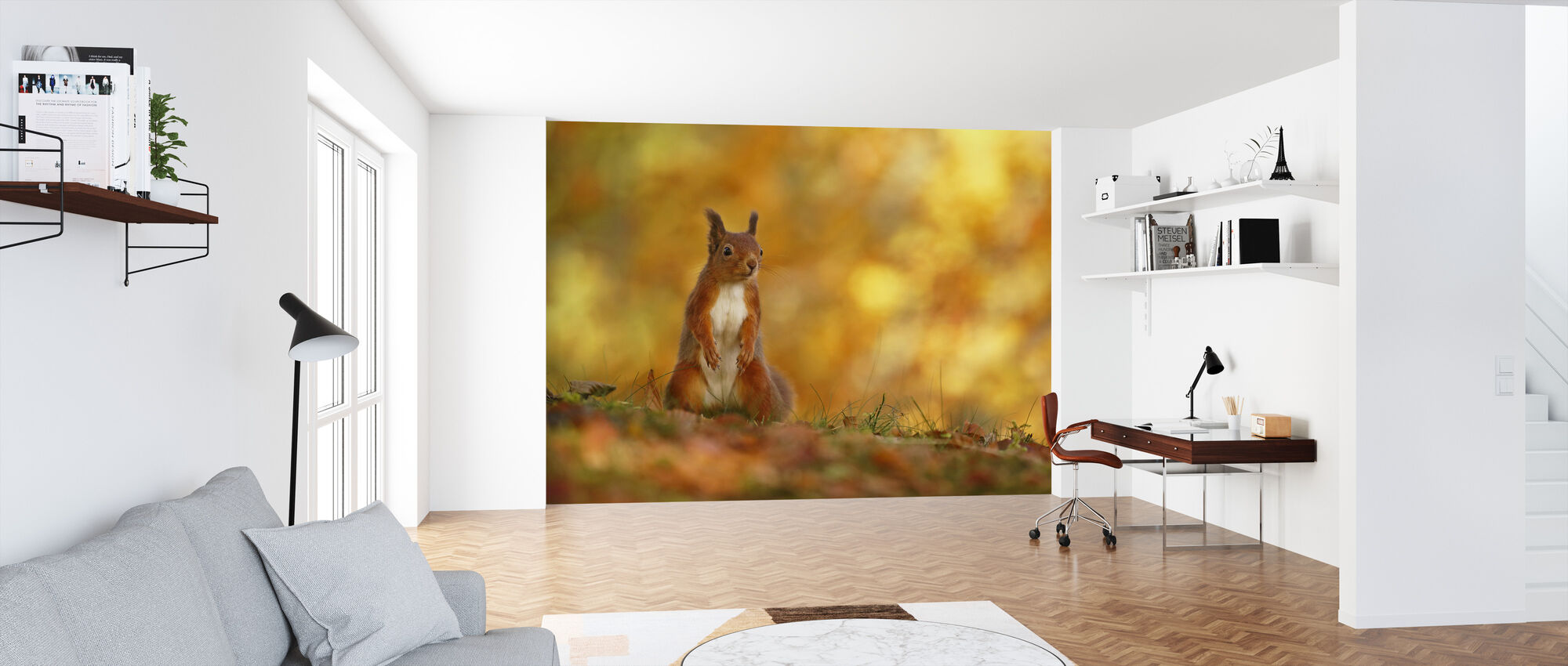Red Squirrel on Forest Floor - Wallpaper - Office