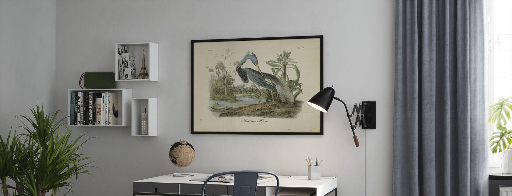 Audubons Louisanna Hegre - Innrammet bilde - Kontor