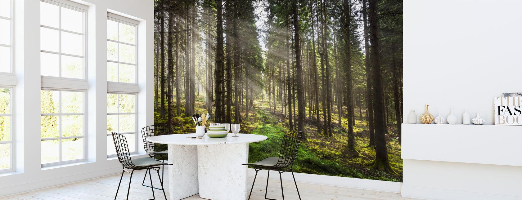Forest Calls - Wallpaper - Kitchen