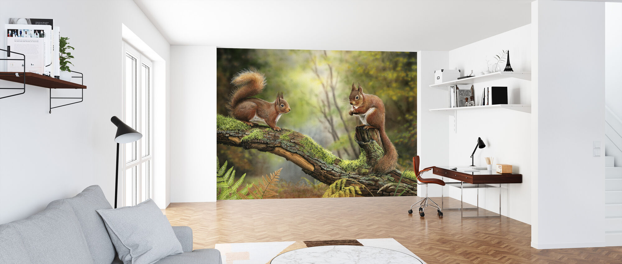 Red Squirrels - Wallpaper - Office