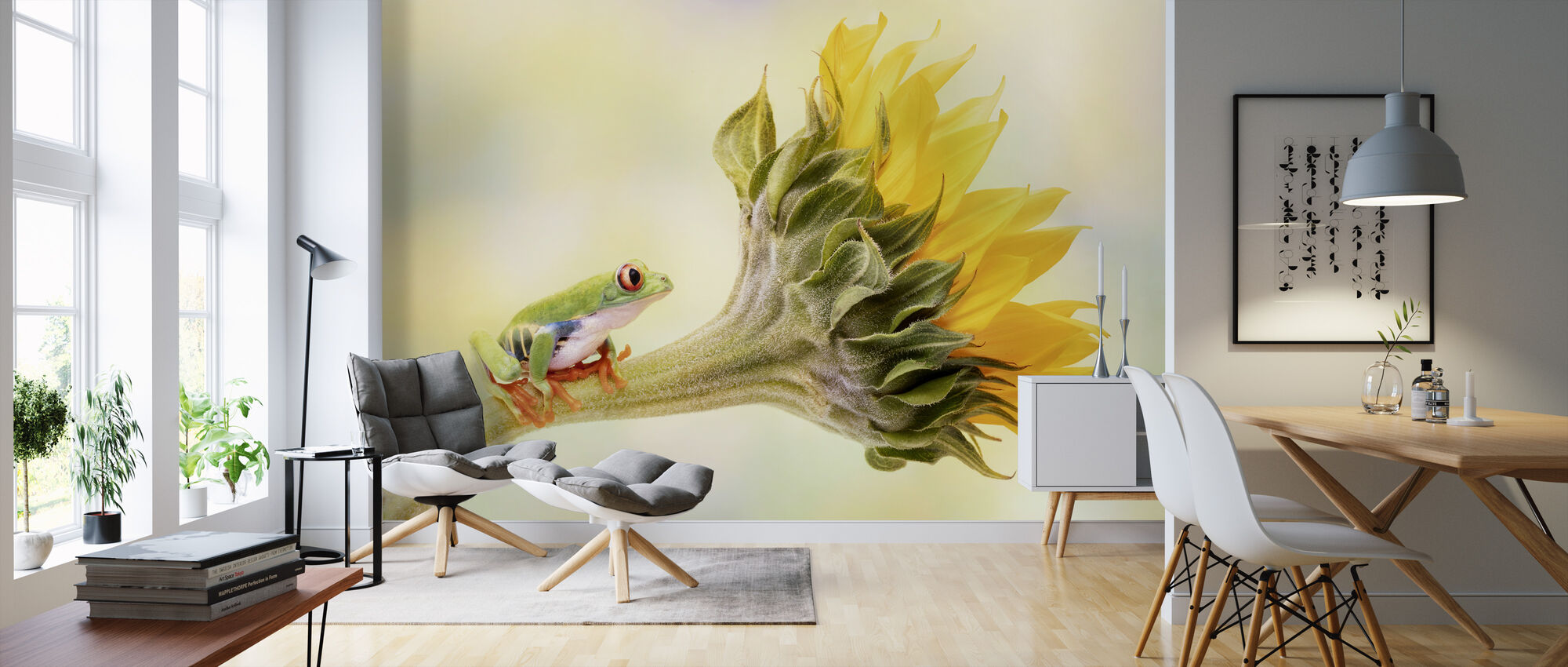 Tree Frog on a Sunflower - Wallpaper - Living Room