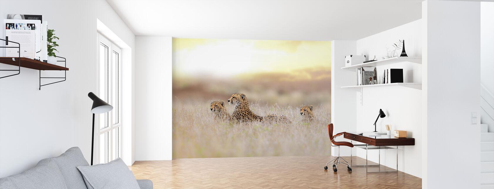 Cheetah Familie - Behang - Kantoor
