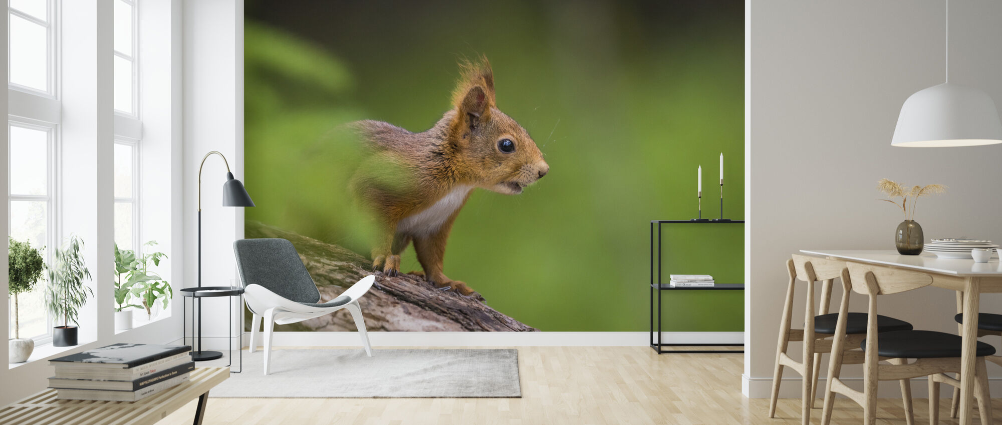 Orava - Tapetti - Olohuone